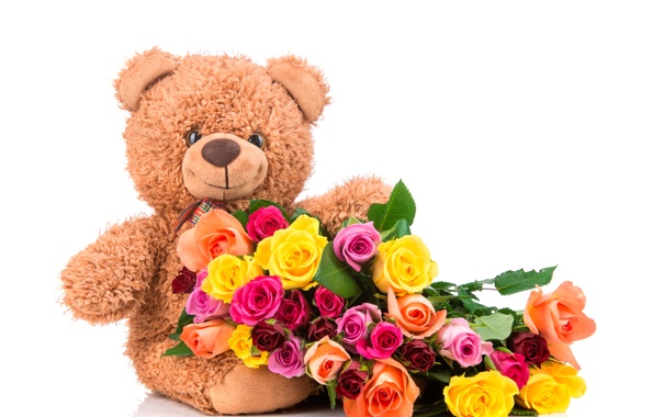 Фото обои розы, colorful, мишка, bear, flowers, roses, with love