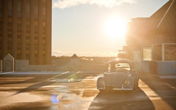 Фото обои солнце, лучи, свет, жук, Volkswagen, тачки, старый