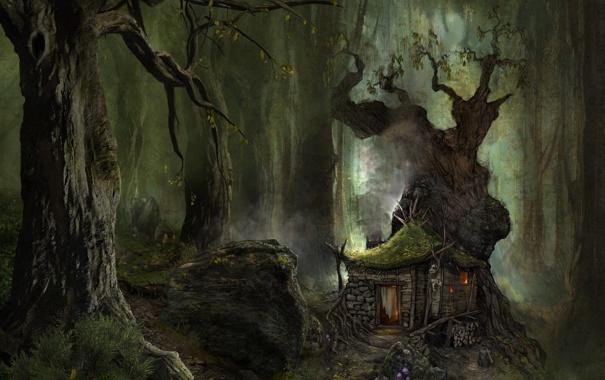 Фото обои лес, пейзаж, природа, Arcania Gothic 4