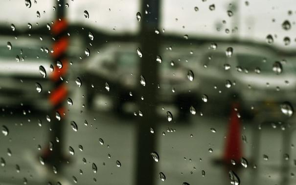 Фото обои стекло, прозрачность, капли, туманность, дождь, размытость