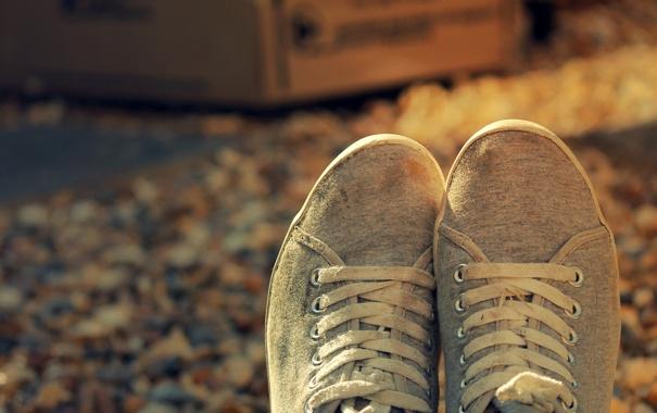 Фото обои осень, обувь, кеды