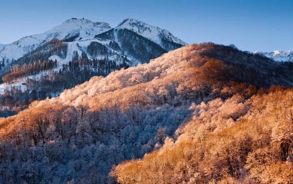 Фото обои зима, снег, деревья, пейзаж, природа, обои, гора