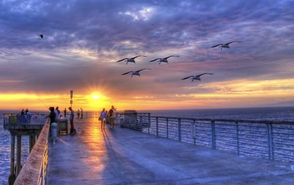 Фото обои море, небо, облака, закат, птицы, люди, чайки