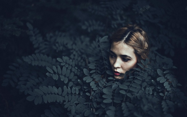 Фото обои листья, девушка, макияж, Hanna
