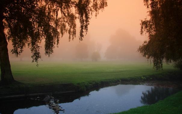 Фото обои деревья, природа, туман, утро, канал