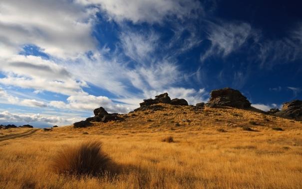 Фото обои поле, небо, пейзаж, природа, камни, холмы, растения