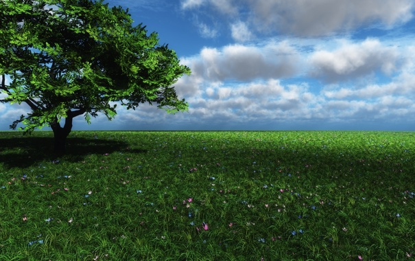 Фото обои поле, трава, облака, цветы, дерево, тень, арт
