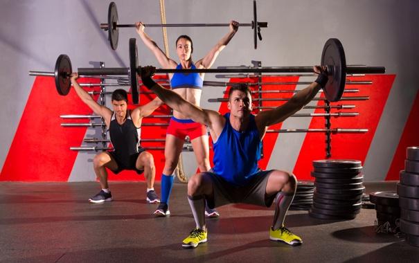 Фото обои девушка, штанги, парни, тренировка, спорт