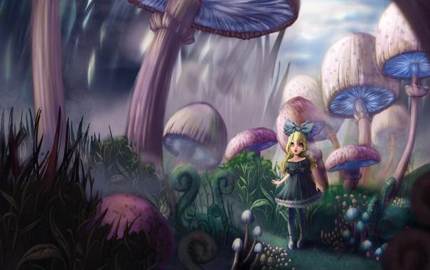 Фото обои грибы, сказка, арт, девочка, Alice in Wonderland