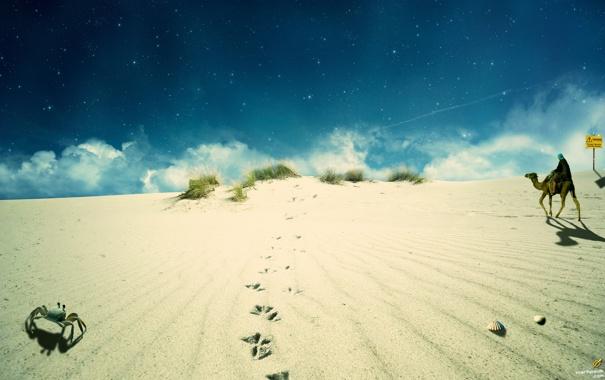 Фото обои песок, небо, верблюд, бэдуин