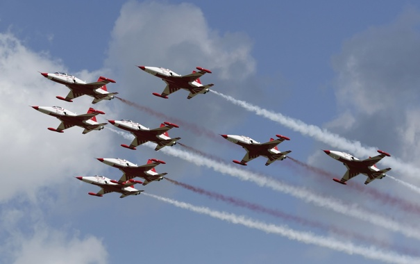Фото обои авиация, шоу, пилотажная, эскадрилья, F-5, NF-5АБ, Цанадайр