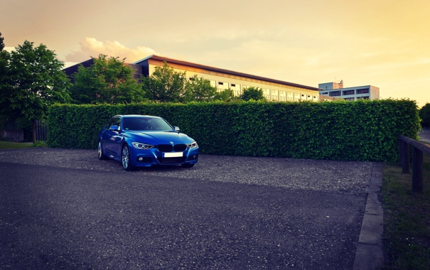 Фото обои BMW, Синяя, БМВ, Tuning, F30, BBS, 330d