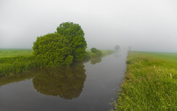 Фото обои лето, природа, туман, река, утро, зеленые, берега