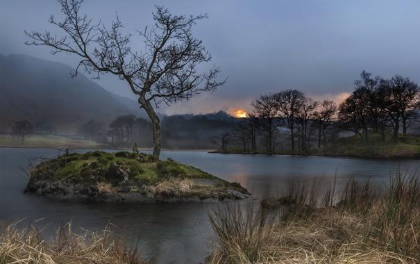 Фото обои трава, деревья, закат, озеро, остров, островок, сухая