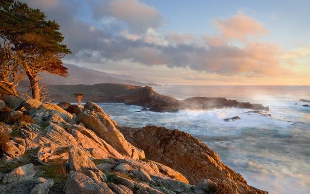 Фото обои берег, прибой, калифорния