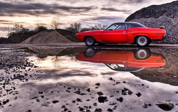 Фото обои Dodge, Challenger, American Muscle Cars