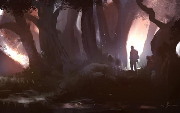 Фото обои лес, человек, арт