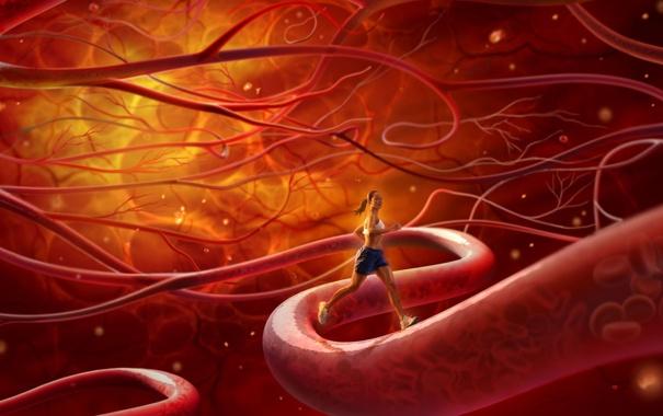 Фото обои кровь, бег, клетки, сосуды, спорсменка