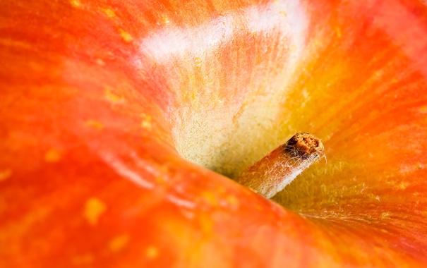 Фото обои яблоко, верх, ямка