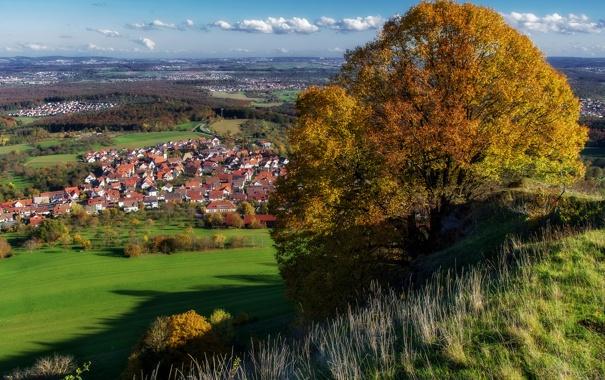 Фото обои осень, небо, трава, облака, деревья, дома, Германия
