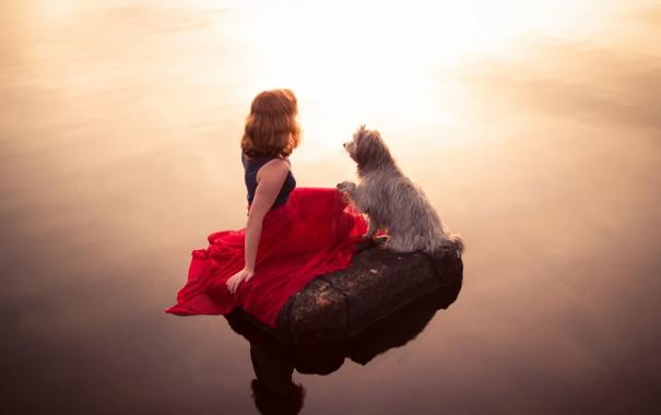 Фото обои девушка, свет, озеро, настроение, собака, вечер