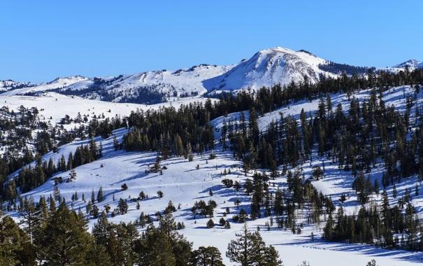Фото обои следы, пейзаж, деревья, природа, горы, снег, Nevada