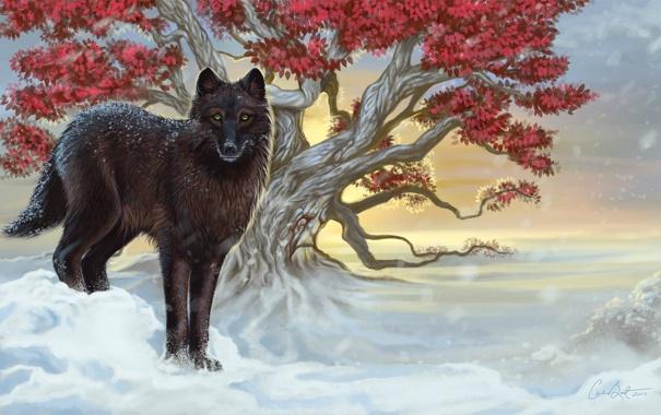Фото обои ветки, дерево, листья, пес, зеленые глаза, холод, зима