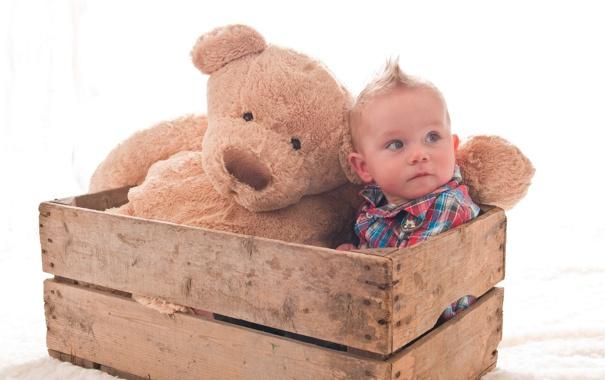 Фото обои мальчик, хаер, ящик, плюшевый медведь, ребёнок, игрушка