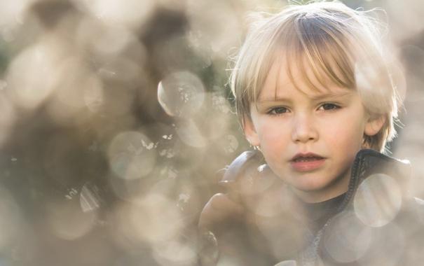 Фото обои взгляд, портрет, мальчик
