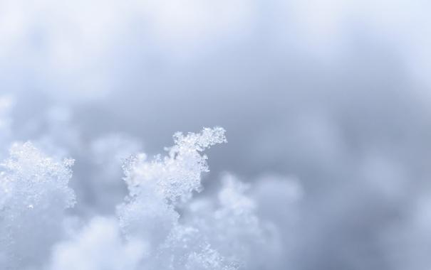 Фото обои лед, вода, снег, трансформацыя