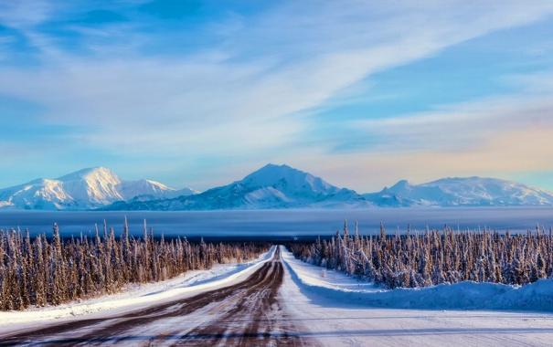 Фото обои лес, горы, пейзаж, дорога