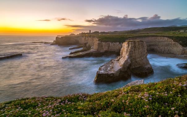 Фото обои море, цветы, скалы, рассвет, побережье, горизонт, Калифорния