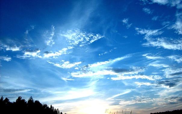 Фото обои осень, небо, закат