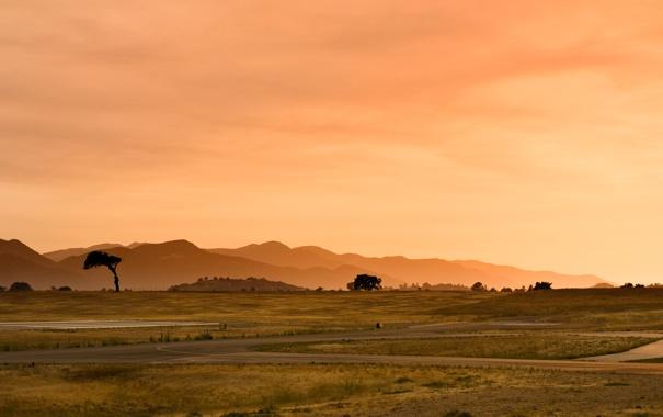 Фото обои дорога, небо, трава, свет, деревья, пейзаж, закат