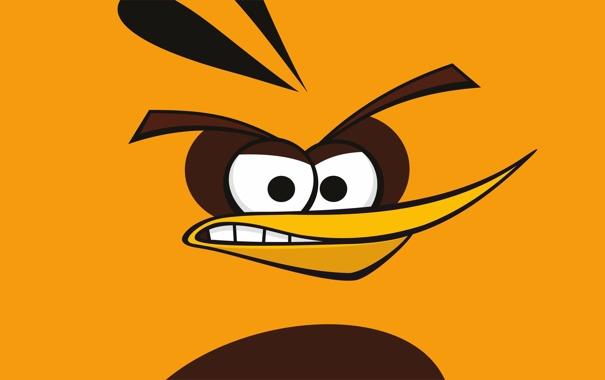 Фото обои yellow, birds, Angry Birds, Globe, hamoween