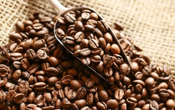 Фото обои кофе, зерна, beans, coffee, cloth
