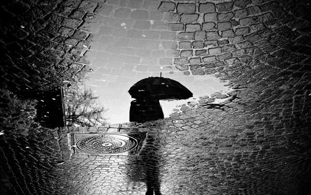 Фото обои дорога, город, отражение, дождь, человек, зонт, лужа