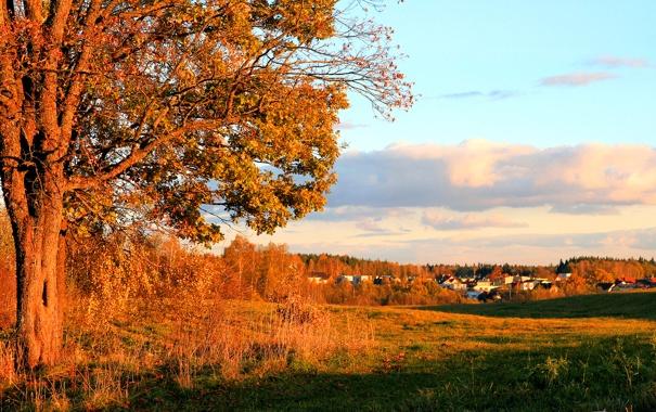 Фото обои облака, осень, поселок, дома, деревья, небо, городок