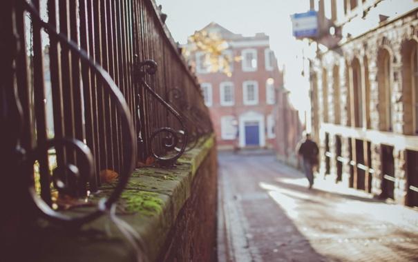 Фото обои улица, мох, ограда