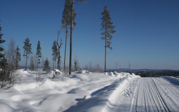 Фото обои зима, снег, блеск, мороз, дорога