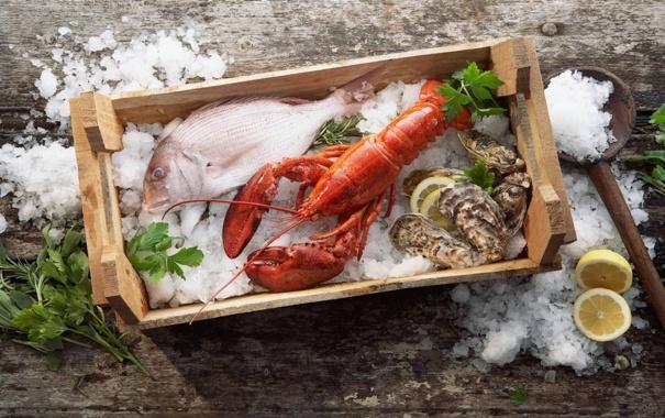 Фото обои лед, зелень, лимон, еда, рыба, омар, устрицы