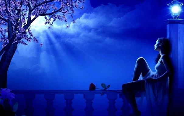Фото обои цветок, девушка, облака, ночь, дерево, луна, фонарь