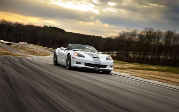 Фото обои дорога, небо, деревья, суперкар, corvette, кабриолет, шевроле
