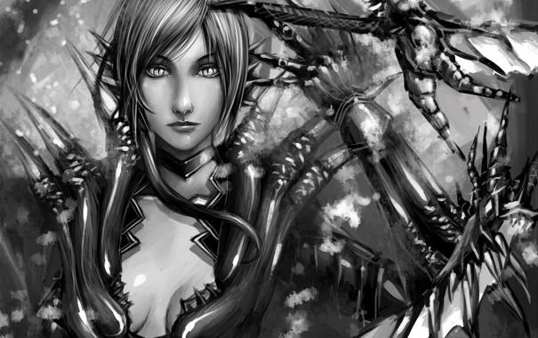 Фото обои взгляд, девушка, черно-белая, меч, арт, dragon age, tekkoontan