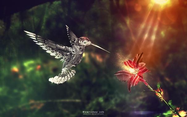Фото обои цветок, робот, колибри, птичка