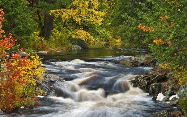 Фото обои осень, лес, река, водопад, Природа