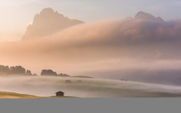 Фото обои пейзаж, горы, туман, дом