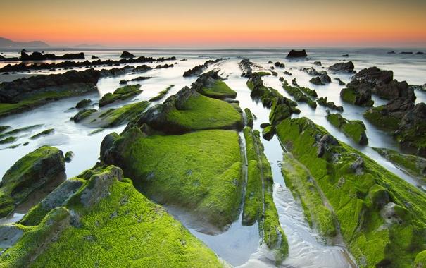 Фото обои закат, камни, скалы, небо, отлив, водоросли, море