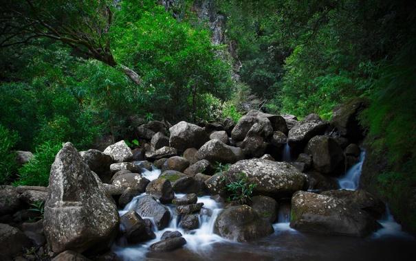 Фото обои вода, природа, ручей, камни, водопад