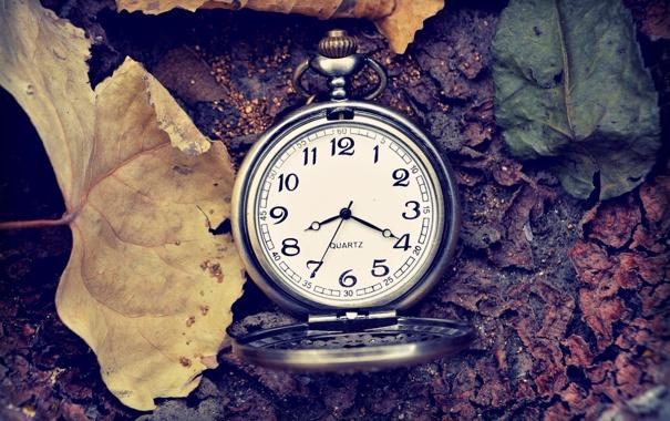 Фото обои листья, время, стрелки, часы, цифры